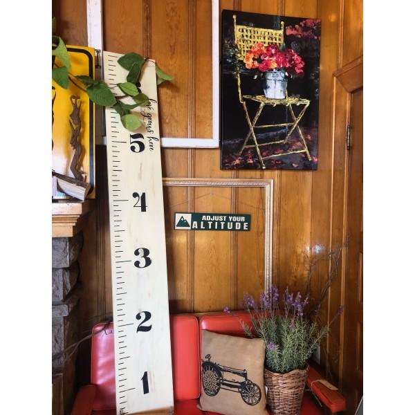 DIY Growth Chart KIT
